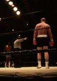 boxers Immagine Stock