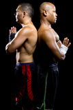 Boxers Posing Royalty Free Stock Photography