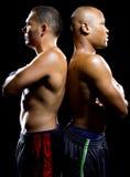 Boxers Posing Stock Photo