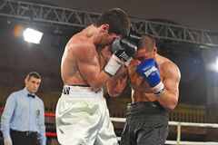 Boxers in the ring during fight for ranking points. Kyiv, Ukraine - December 24, 2016: An unidentified boxers in the ring during fight for ranking points in the Stock Images
