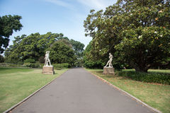 The Boxers at the Royal Botanic Gardens. SYDNEY,NSW,AUSTRALIA-NOVEMBER 20,2016: The Boxers classical statues with footpath, tourists and flowering magnolia tree Royalty Free Stock Image