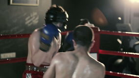 Boxers spend training sparring in the ring. stock video