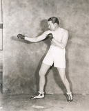 Boxers stance Stock Images