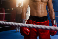 Boxers standing in boxing ring. At fitness studio Royalty Free Stock Photography