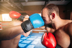 Boxers strike blows. Boxers strike blows to each other. Boxing fighters trainning. Boxing ring on the background Royalty Free Stock Photography