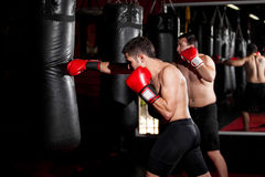 Boxers training with a punching bag Royalty Free Stock Photo