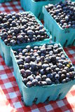 Boxes of blueberries. At the farmers' market, boxes of fresh blueberries for sale Royalty Free Stock Images