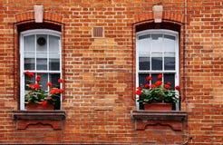 boxes fönstret Arkivbild