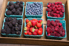 Boxes of fresh berries just picked at the market Royalty Free Stock Images