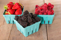 Boxes of fresh berries just picked at the market Stock Images