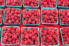 Boxes of fresh red raspberries. At the market Stock Image