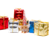 Boxes of gifts and  mousy Royalty Free Stock Photography