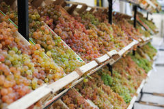 Boxes of grapes Royalty Free Stock Photos