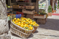 Boxes of lemons in a fruit shop Royalty Free Stock Image
