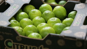 Boxes with lime, grocery store, transportation of fruit stock footage