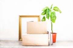 Boxes for moving , flower in a pot, old frame for a picture on a white backgroud Garage sale and moving concept Copy space royalty free stock photos