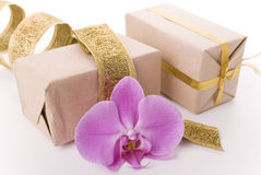 Boxes and orchid Royalty Free Stock Photography