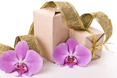 Boxes and orchid Royalty Free Stock Images
