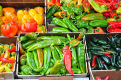 Boxes of peppers Royalty Free Stock Photography