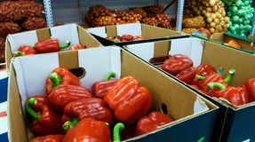 Boxes with red peppers in the food store Royalty Free Stock Images