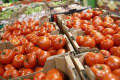 Boxes with red tomatoes for sale in grocery Royalty Free Stock Photography