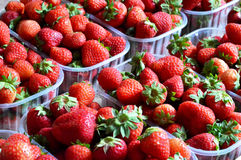 Boxes of strawberries Royalty Free Stock Image