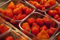 Boxes of Strawberries Stock Photos