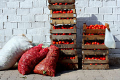 Boxes of tomatoes. At outdoor street market 2 Stock Images