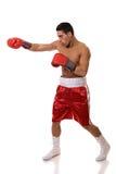Boxeur Image libre de droits