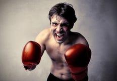 Boxeur agressif Photo stock