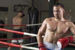 Boxeur beau wating pour le combat photos libres de droits