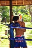 Boxeur dans le concetration Image stock