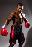 Boxeur dans le support prêt pour la bataille Image stock
