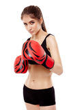 Boxeur de Madame avec des gants Image libre de droits