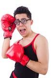 Boxeur drôle Photographie stock