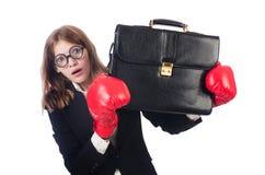 Boxeur drôle Photo stock