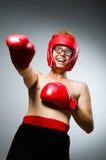 Boxeur drôle contre Images libres de droits