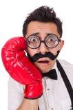 Boxeur drôle d'isolement Images libres de droits