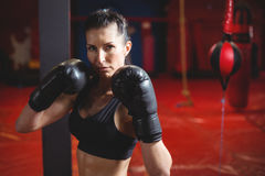Boxeur féminin sûr exécutant la position de boxe photographie stock