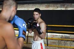 Boxeur faisant la boxe d'entraînement Images libres de droits
