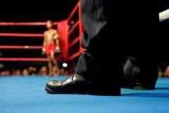 Boxeur junior de coup-de-pied Photographie stock