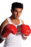 Boxeur latin images stock