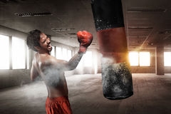 Boxeur masculin asiatique puissant avec le sac de sable photos stock