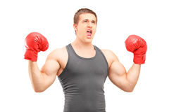 Boxeur masculin avec les gants de boxe rouges faisant des gestes le bonheur Image libre de droits