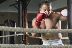 Boxeur sportif pendant la séance d'entraînement dure image stock