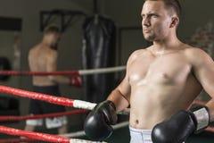 Boxeur sur l'anneau image libre de droits