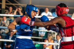 Boxeurs de combat Images stock