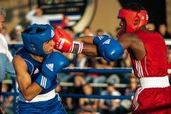 Boxeurs de combat Photographie stock libre de droits