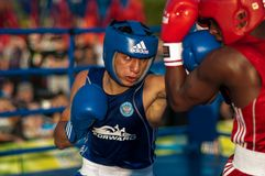 Boxeurs de combat Images libres de droits