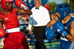 Boxeurs de combat Image stock